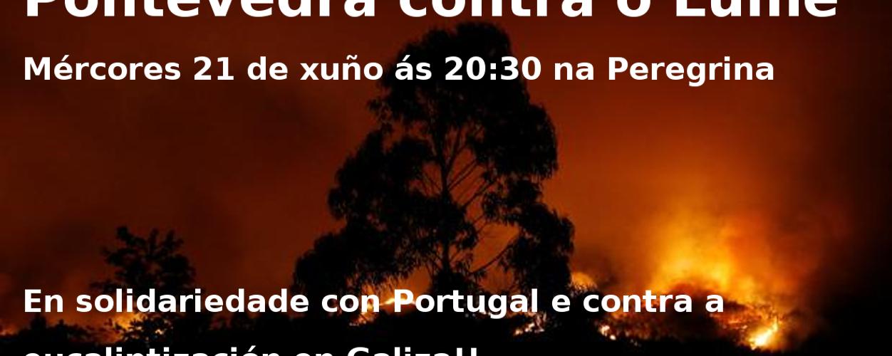 Pontevedra.contra.olume