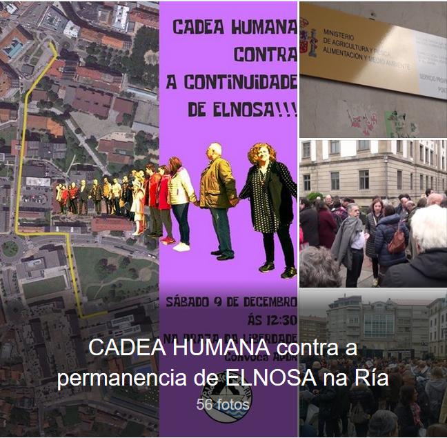 Fotogaleria.cadea.ELNOSA.09.12.17